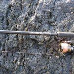 【ヒラスズキ】五年ぶりの魚は久しぶりに足が震えた❗